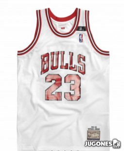 Authentic Jersey Chicago Bulls 1991-92 Michael Jordan