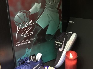 Kobe Bryant dies in fatal accident